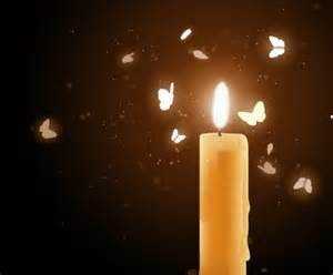 moths flying to candlelight